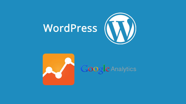 Should You Use a Google Analytics WordPress Plugin